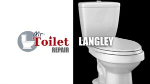 Mr-Toilet-LANGLEY